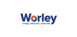 worley-01