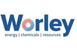 worley1